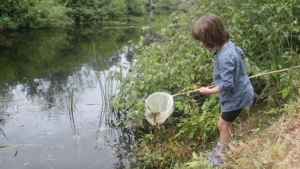 Dipping for treasures in the Branch River; photo by Emily Lord