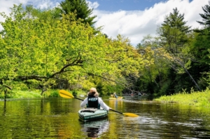 2017 Branch River Paddle; photo by Kate Wilcox